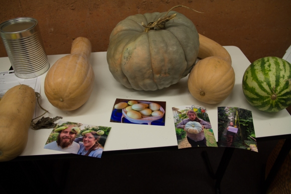Pumpkins and photos