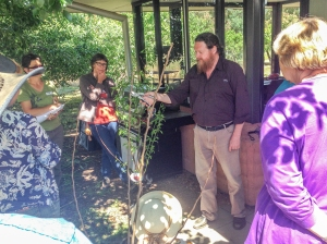 Fruit tree workshop with Pete the Permie.