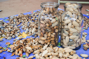 Image of harvested almonds in jar and on sheet