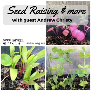Hot tips on seed raising and more
