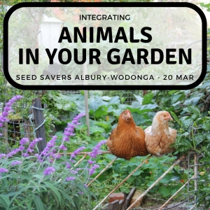 Animals in your garden (1)