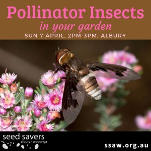 Pollinator-insects_lr